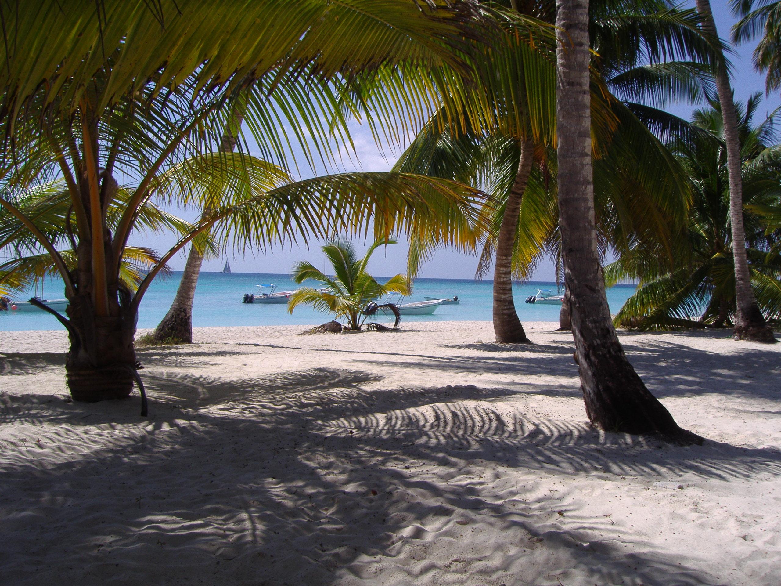 Jaka oferta podróży na Dominikanę