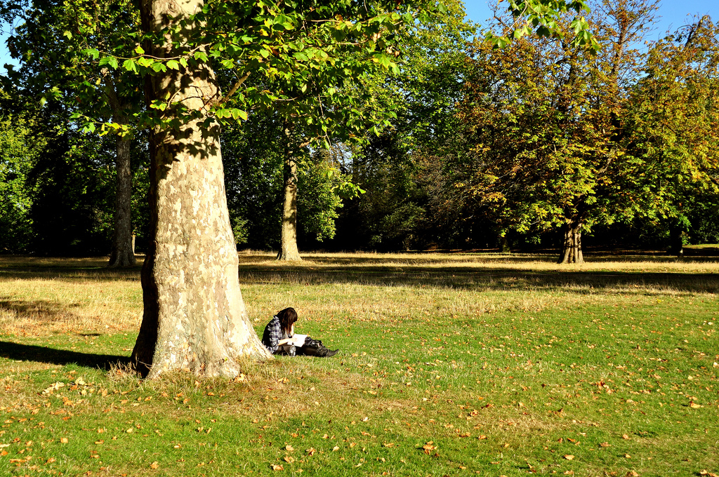 Reading in Hyde Park, London. Image by Youssef Hanna, via Wikimedia Commons