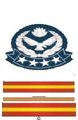 Master Warrant Officer.jpg