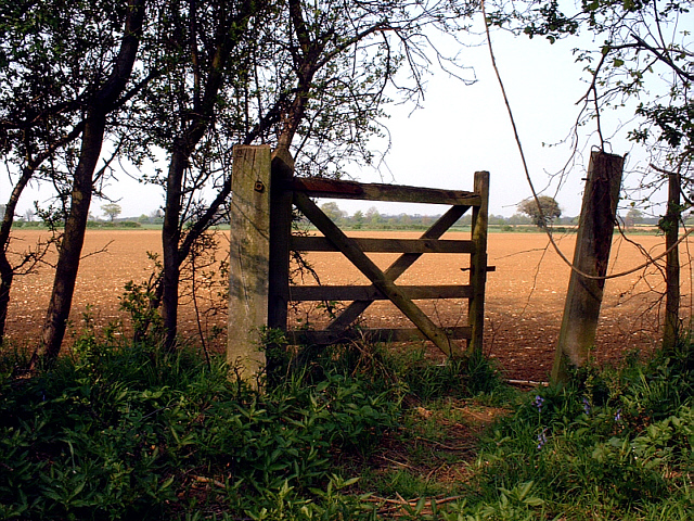 Old gate in Castor Hanglands NNR - geograph.org.uk - 215483