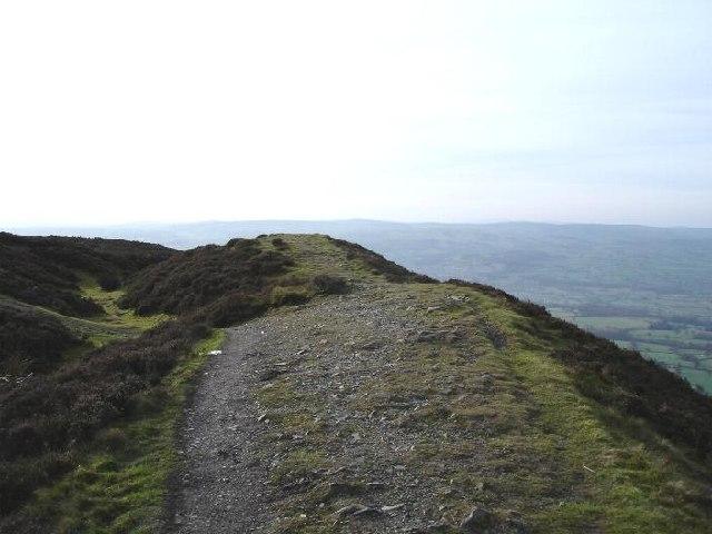 Penycloddiau hill fort - geograph.org.uk - 109965