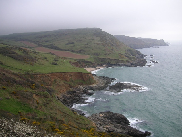 Portlemouth Down - geograph.org.uk - 172073