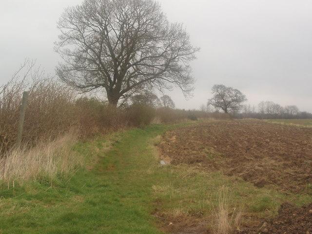 Public Footpath alongside Field Boundary - geograph.org.uk - 374535