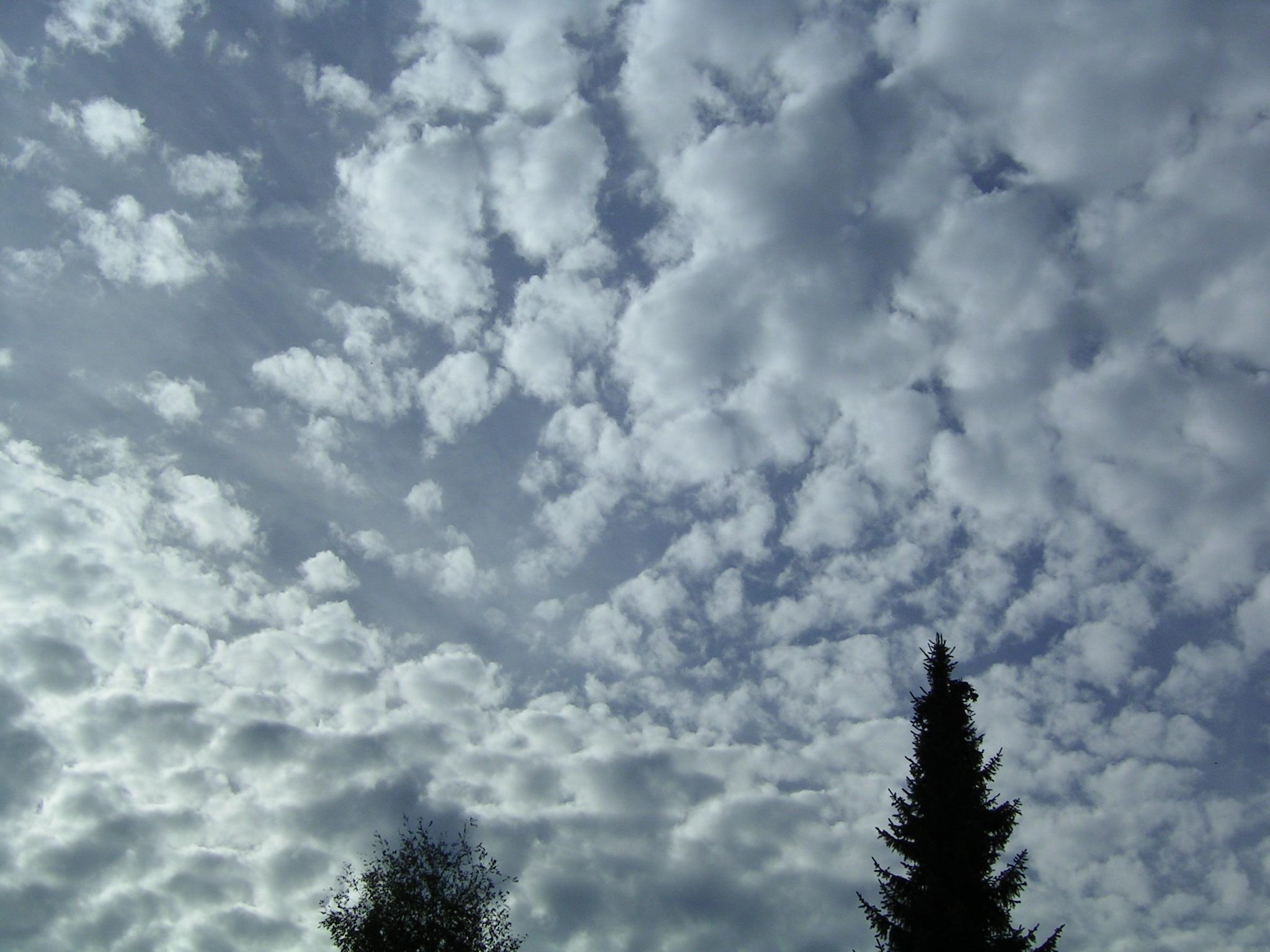 File:Altocumulus se 2.jpg - Wikimedia Commons |Stratocumulus Clouds Description