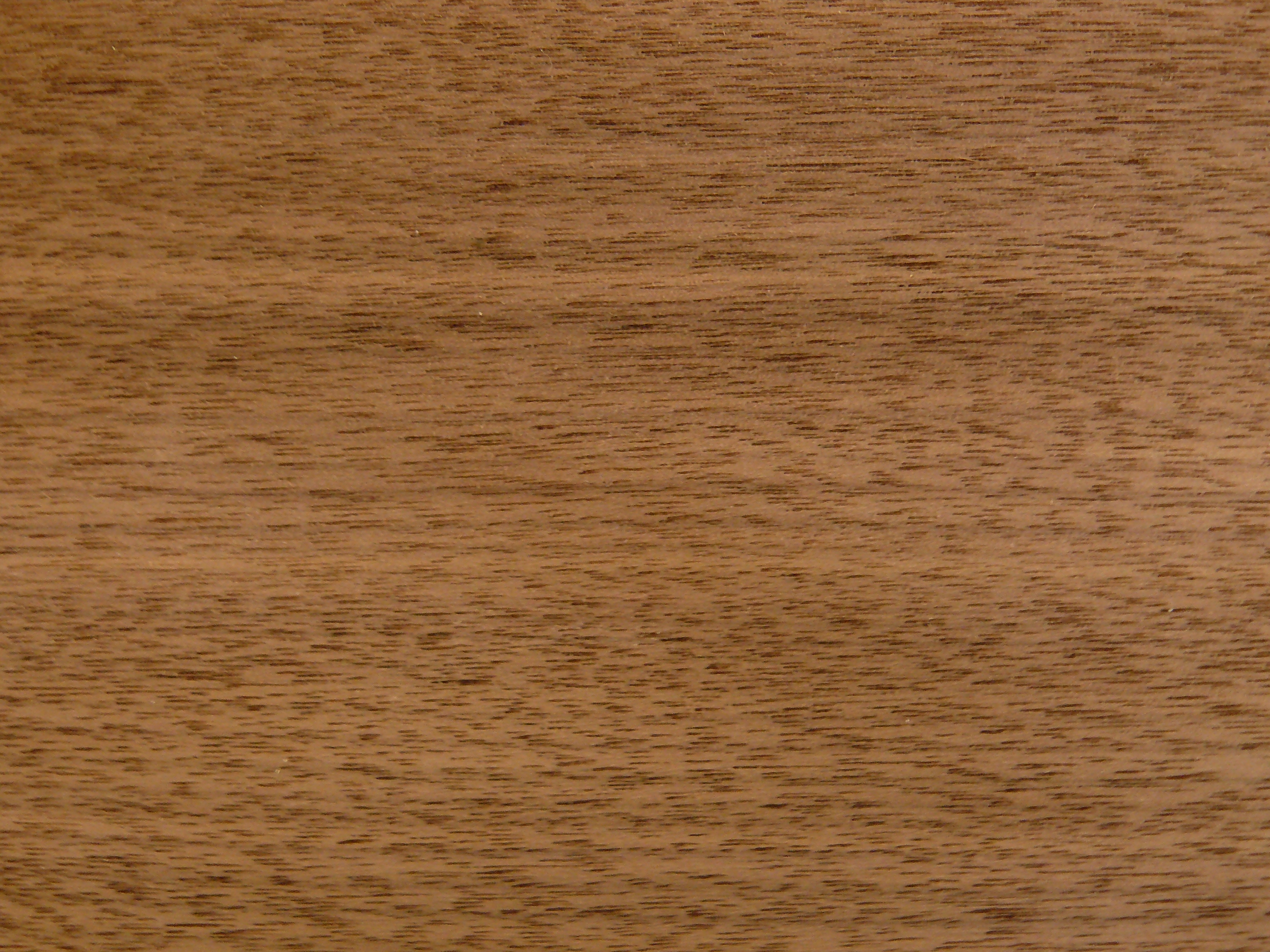 FileTexture de noyerjpg  Wikimedia Commons