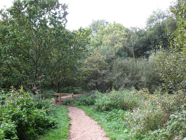 Three Castles Path near Mill Lane - geograph.org.uk - 1528139
