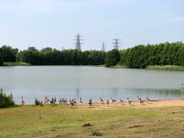 Whitlingham Country Park - the Little Broad - geograph.org.uk - 1381746