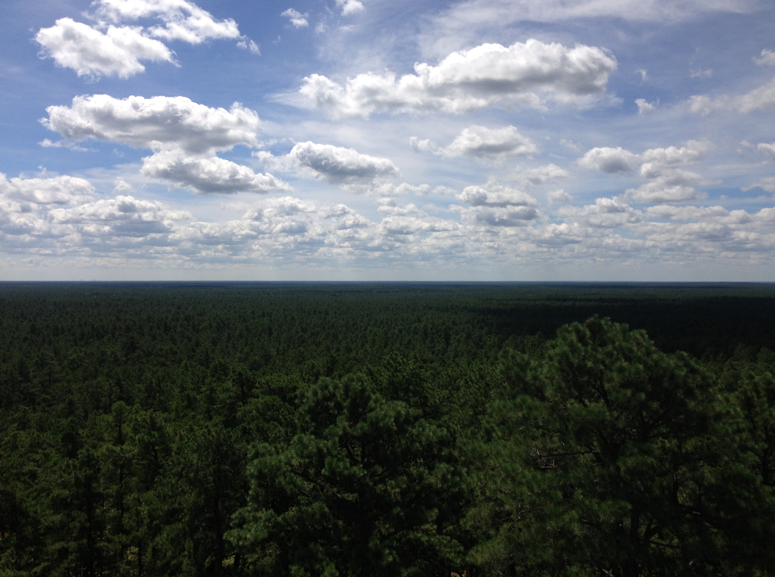 File:2014-08-29 11 54 45 View south from the fire tower on Apple Pie