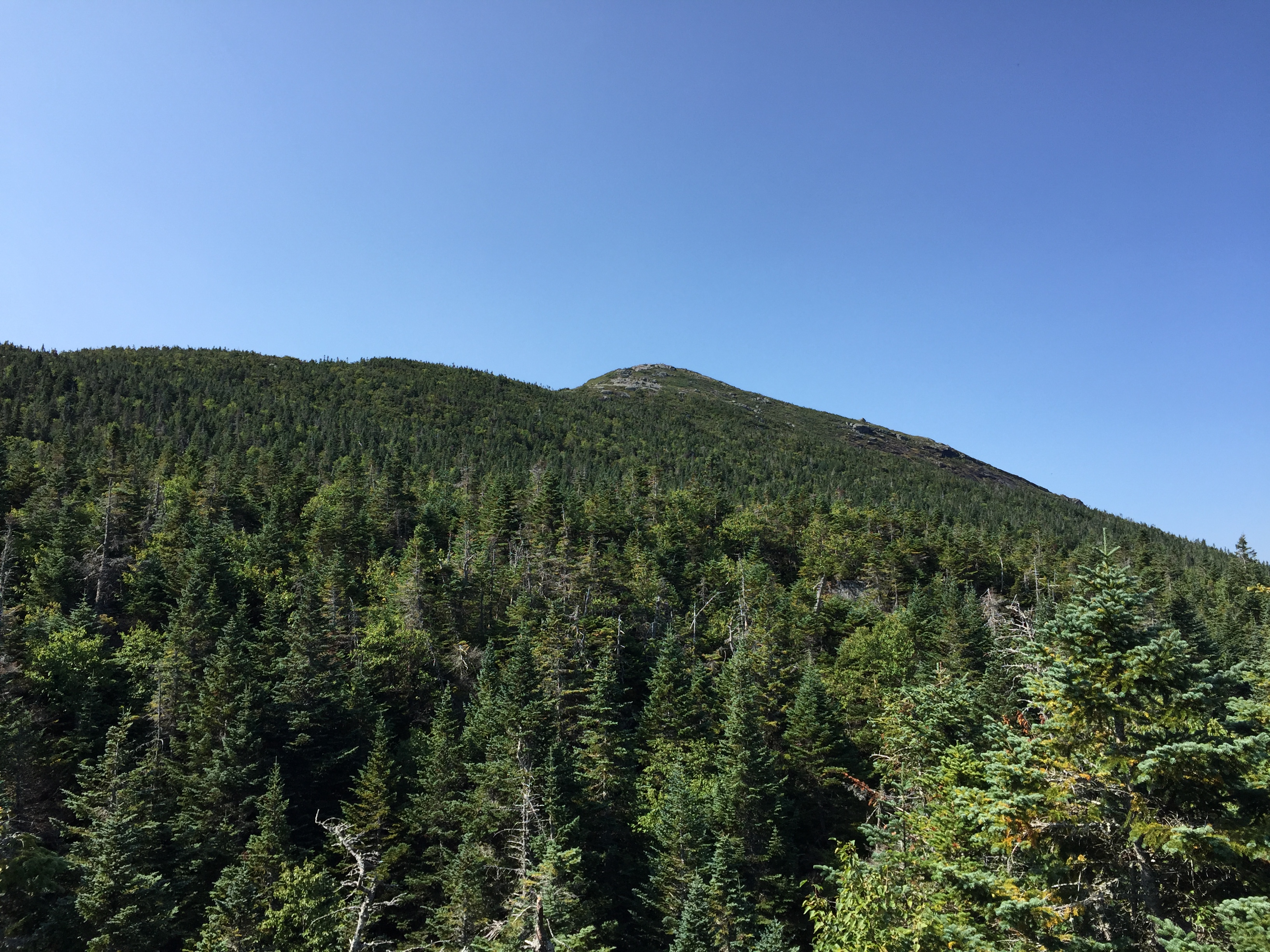 New york essex county keene - File 2016 09 04 10 55 54 View Towards Mount Marcy From The