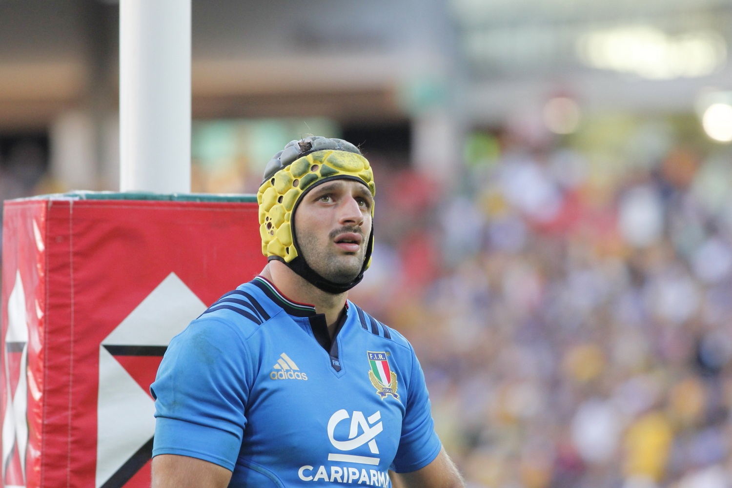 Image result for angelo esposito rugby