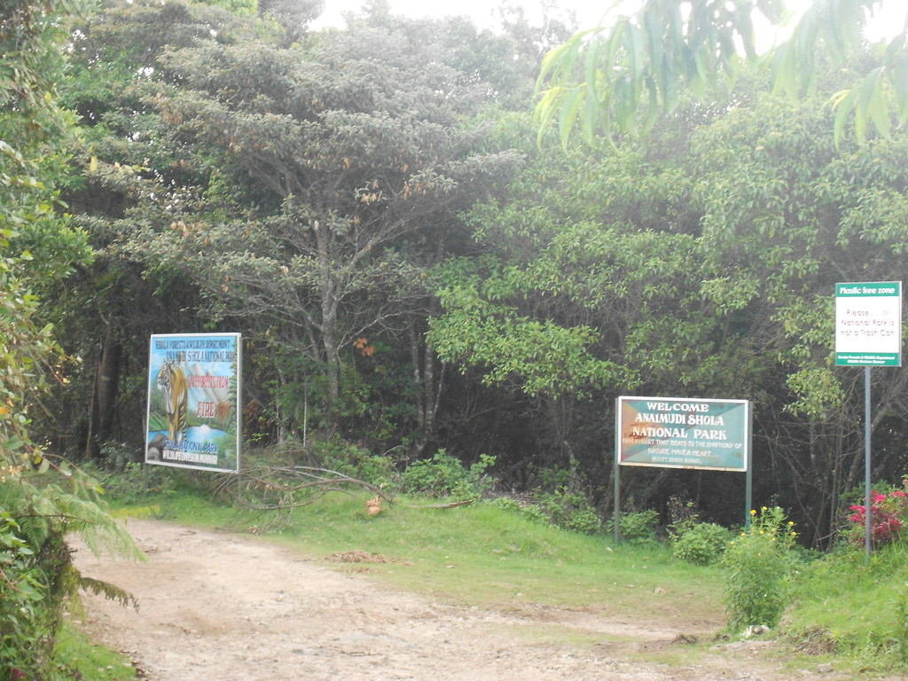 Anamudi Shola National Park Entrance