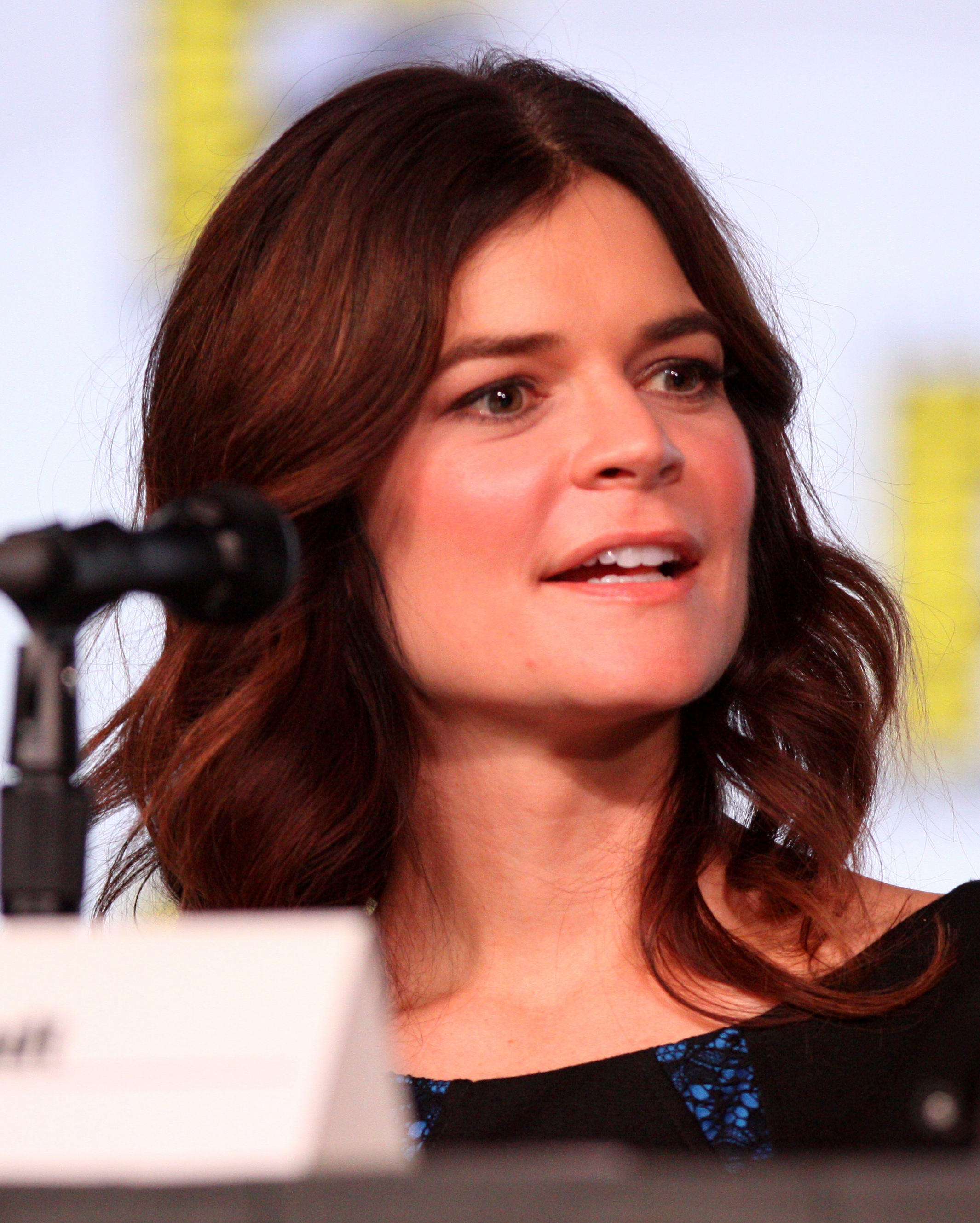Betsy Brandt naked (16 photos), Sexy, Is a cute, Selfie, cameltoe 2015