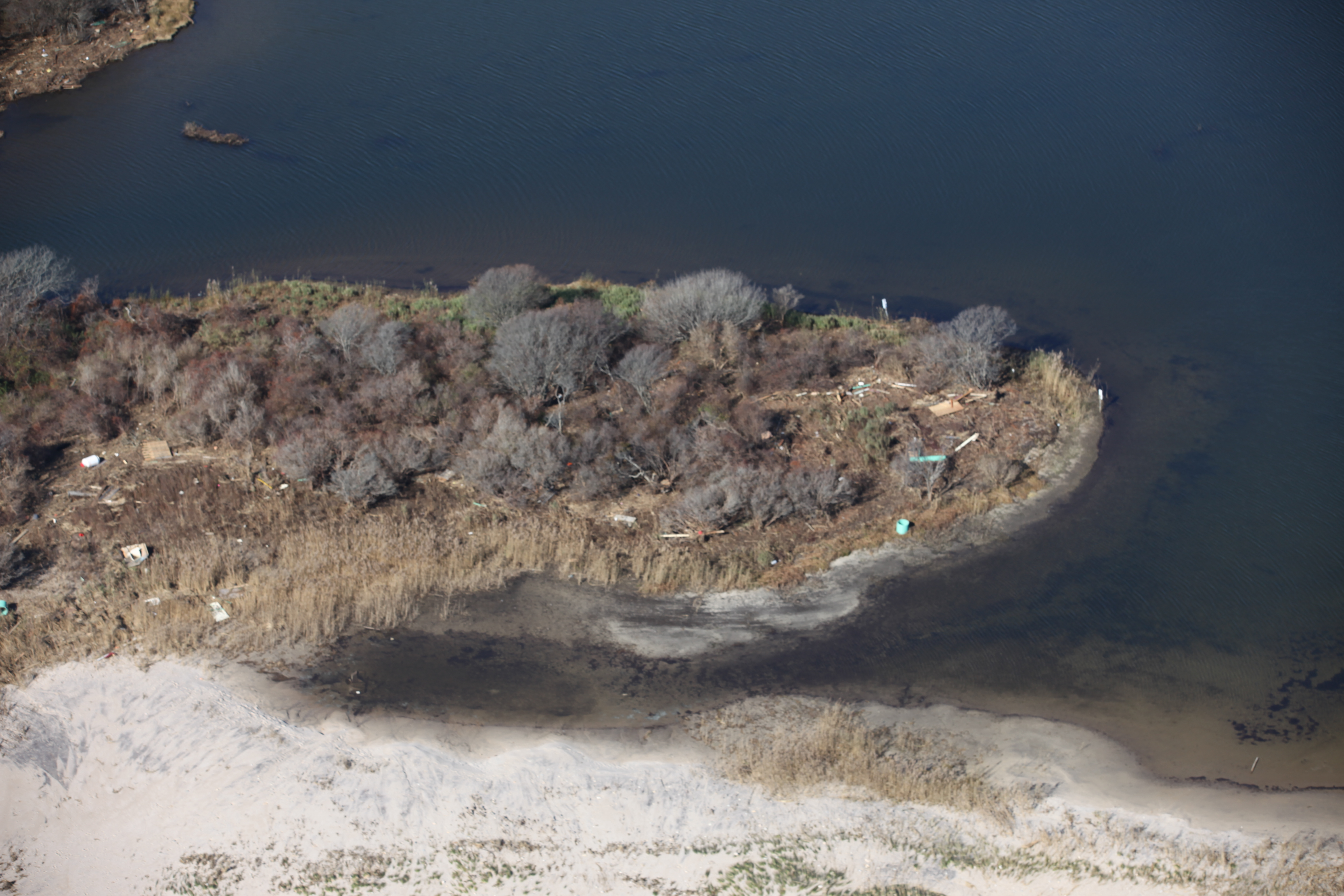 File Debris On Moonstone Beach Ri 8158389221 Jpg