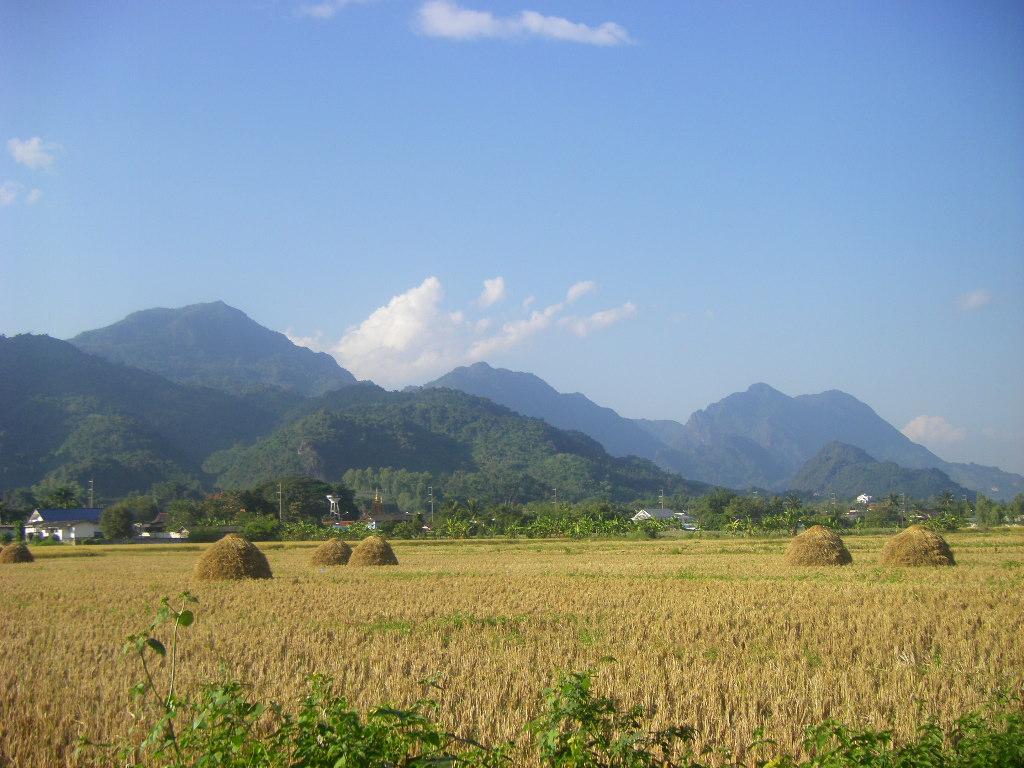 Doi Luang Chiang Dao Tour