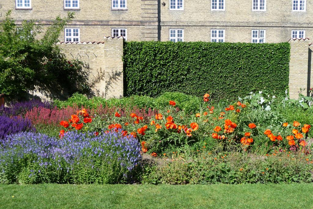 Kongens Have - perennial flower beds.jpg
