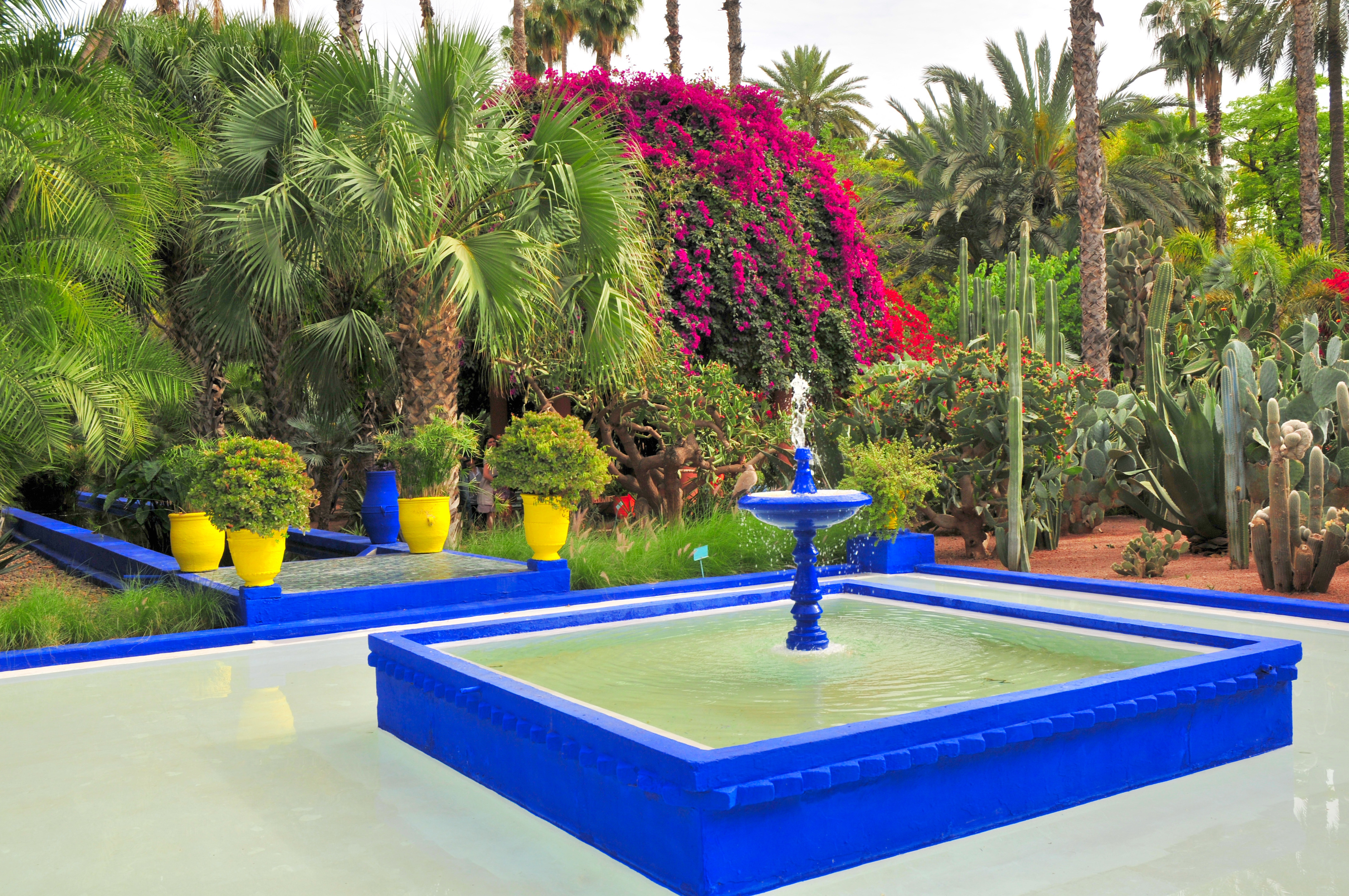 1000 images about jardin majorelle on pinterest marrakech morocco marrakech and morocco. Black Bedroom Furniture Sets. Home Design Ideas