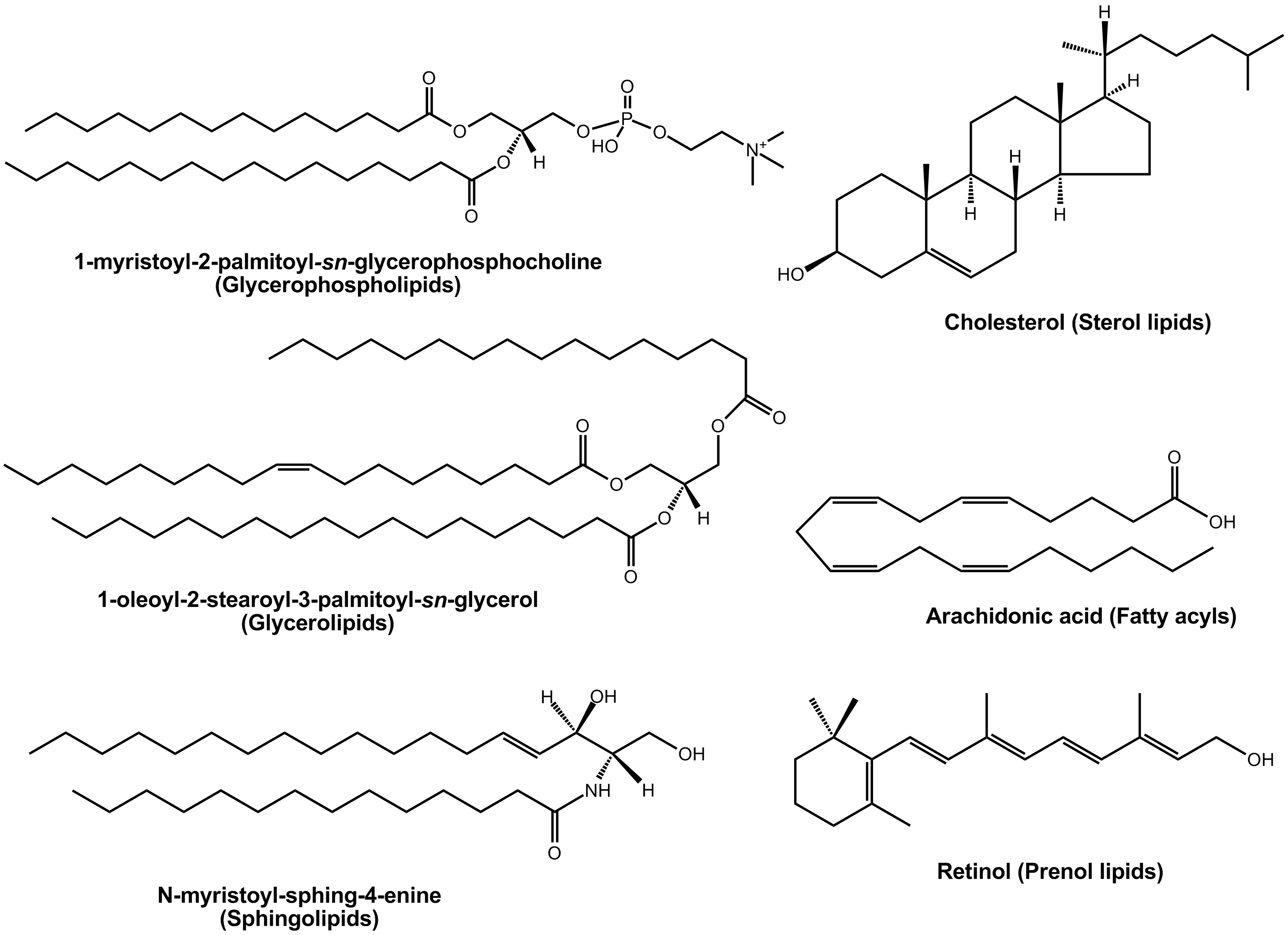 examples of steroid precursors