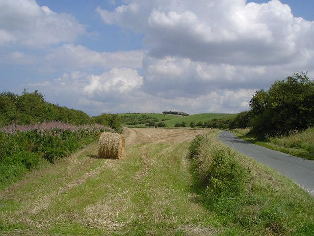 Near Goodmanham - geograph.org.uk - 32311
