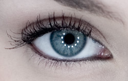 Oko Ringlight Eye Notstudio.jpg