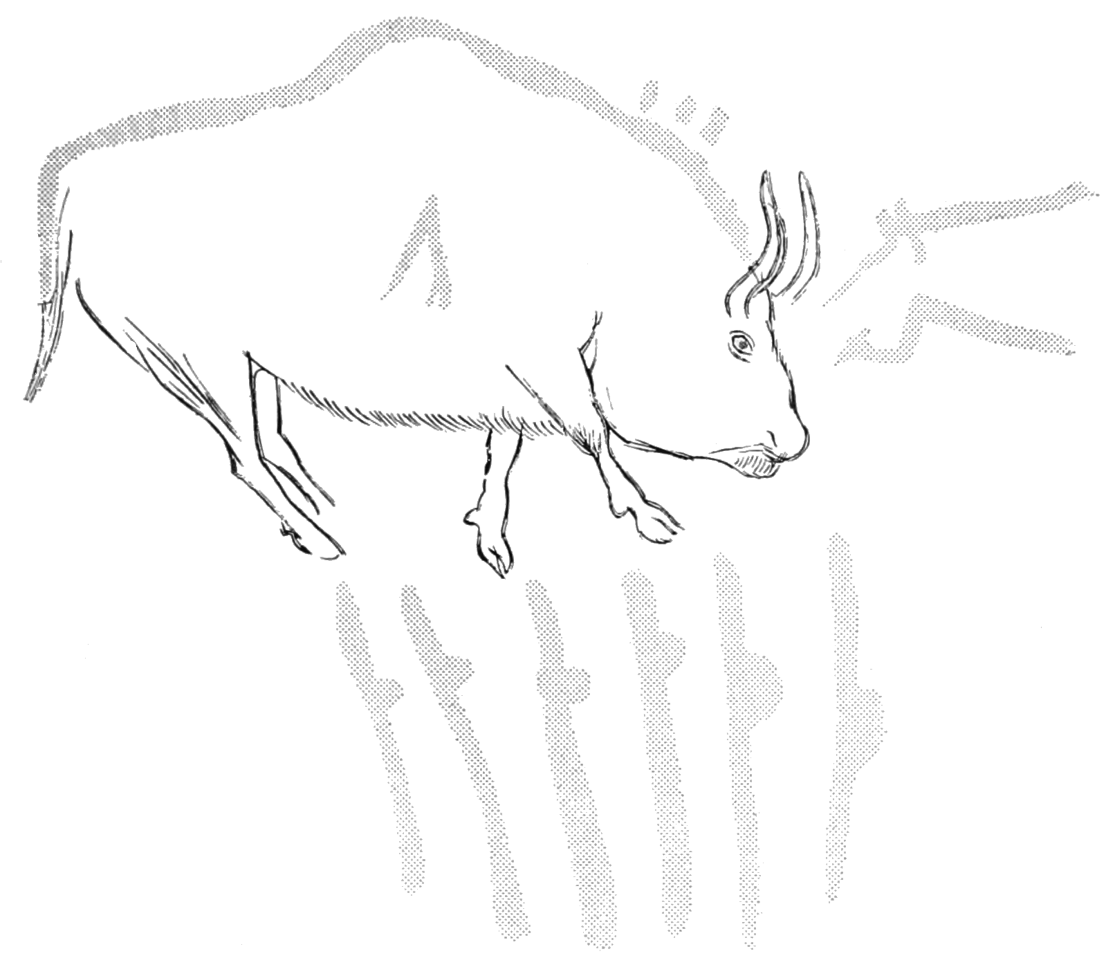 PSM V83 D025 Cave drawing of a wounded bison.png