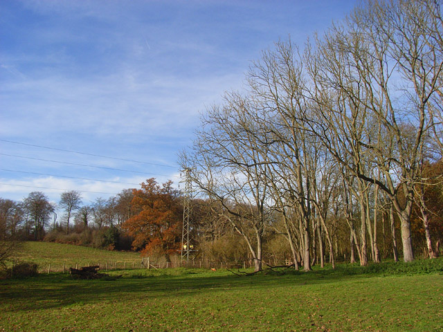 Pasture and woodland, Sonning Common - geograph.org.uk - 1059566