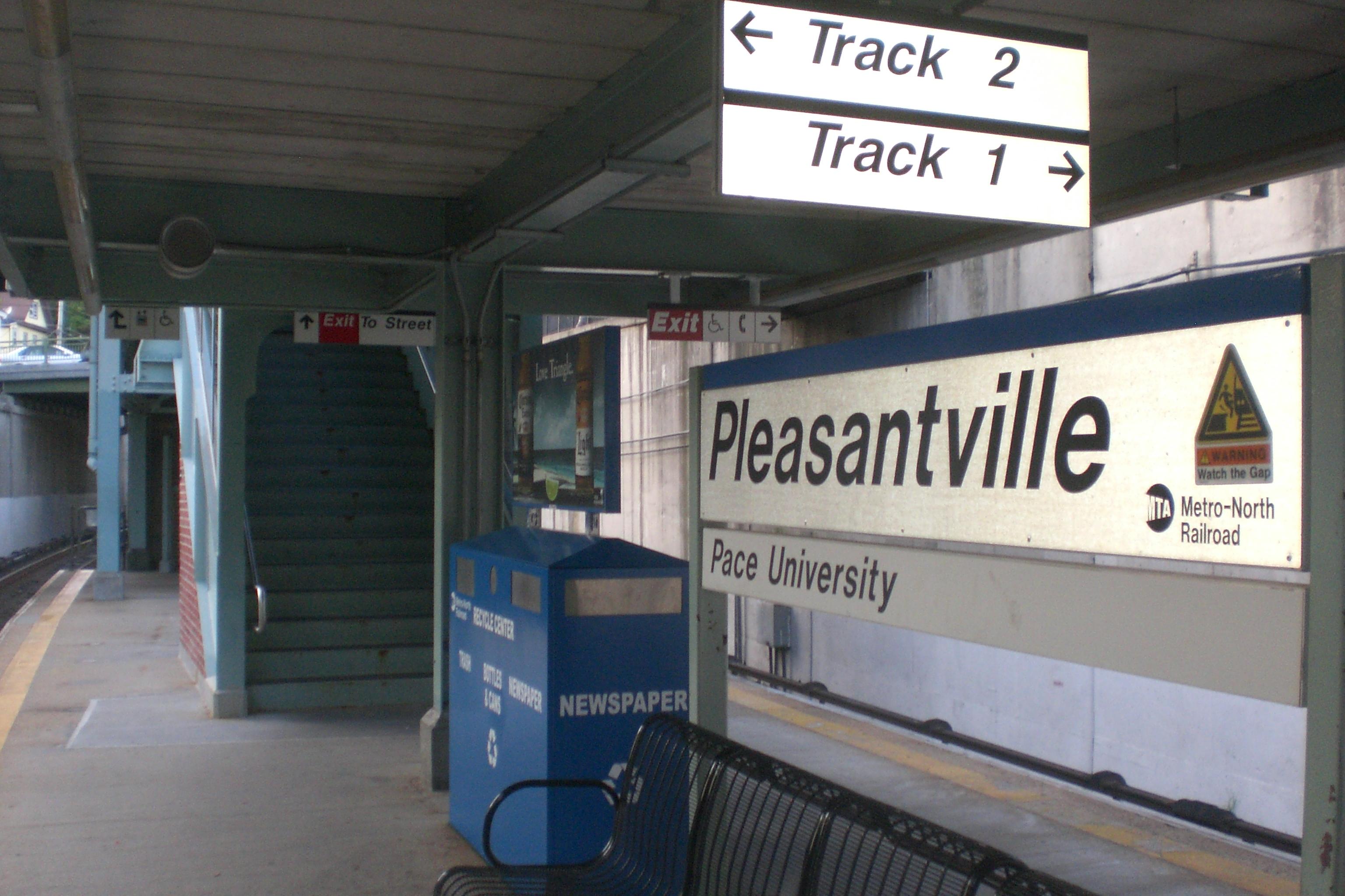 pleasantville essay