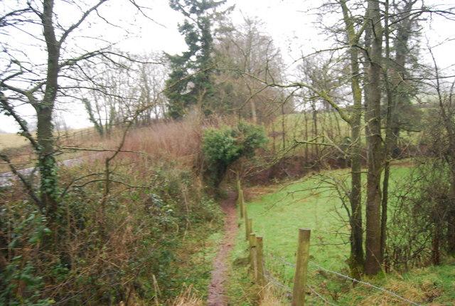Quantock Greenway - geograph.org.uk - 1656623