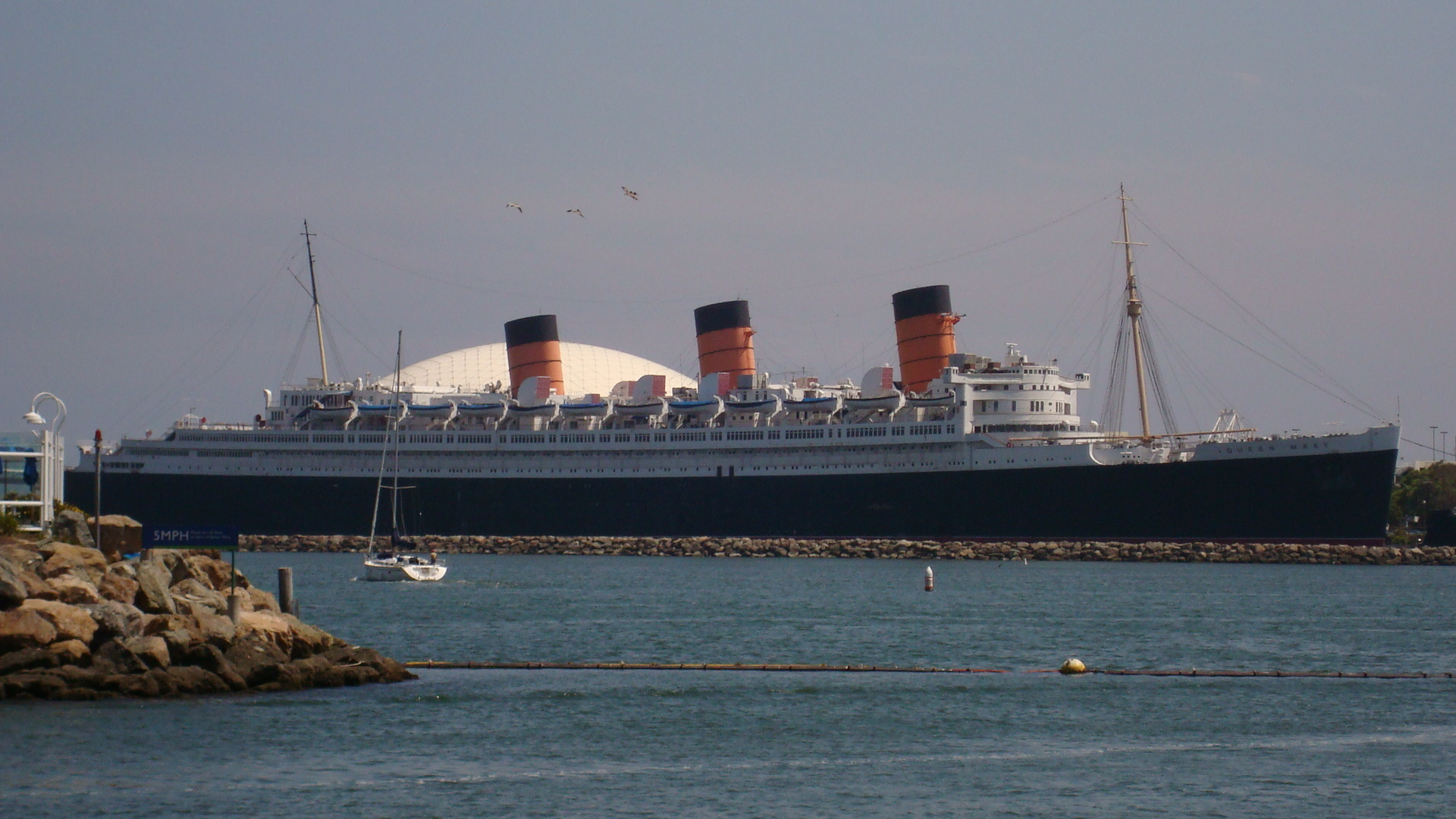 Rms queen mary pictures 25 Most Funniest Memes About Being Sick Images And Pictures