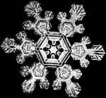 Schnee2.jpg