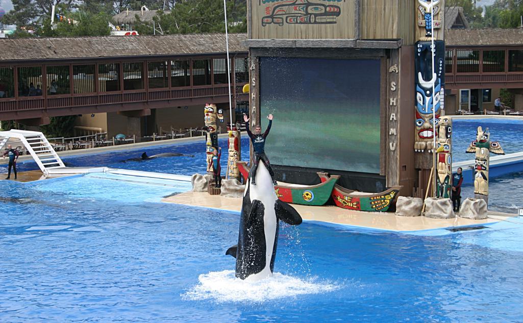 Marine mammal park - Wikipedia, the free encyclopedia