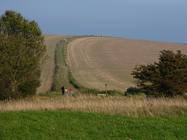South Downs Way on Bignor Hill - geograph.org.uk - 1004860
