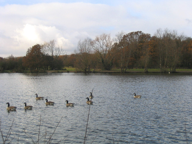 The Lake, Hainault Forest Country Park - geograph.org.uk - 91226