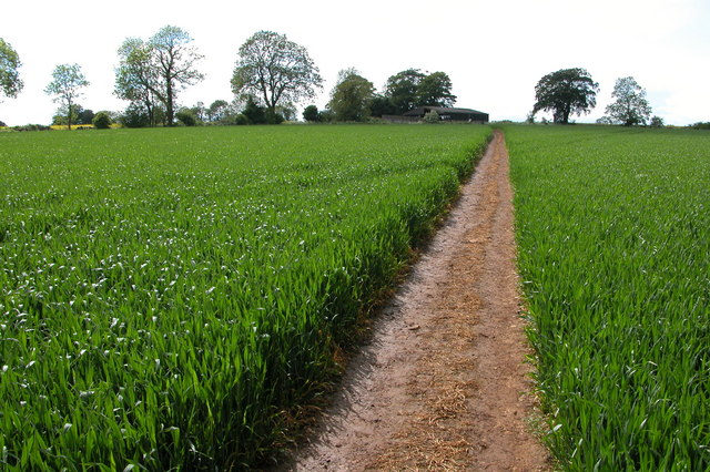 The Wardens' Way - geograph.org.uk - 177993