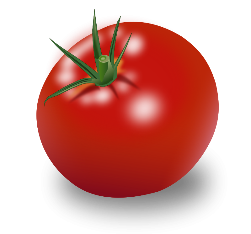 Description tomato