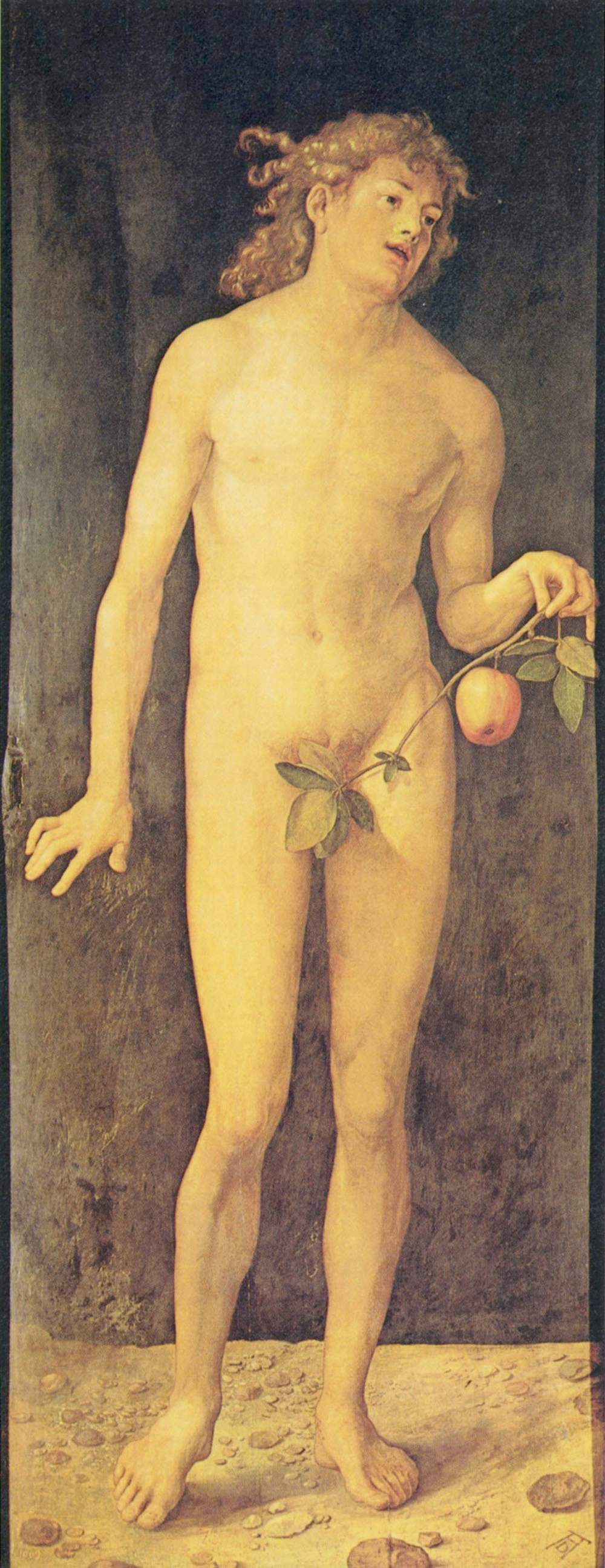 Albrecht Durer Adam And Eve 1507 File Albrecht d Rer Adam