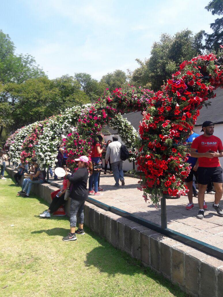 File arcos de flores festival de flores y jardines - Jardines con rosas ...