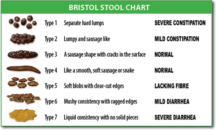 Bristol stool scale wikipedia