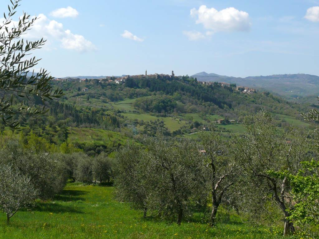 Casteldelpiano z11.jpg
