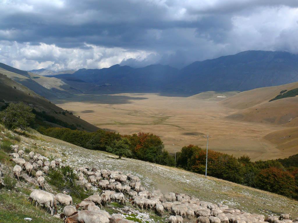 Piani di castelluccio wikimedia commons for Piani di fattoria d epoca