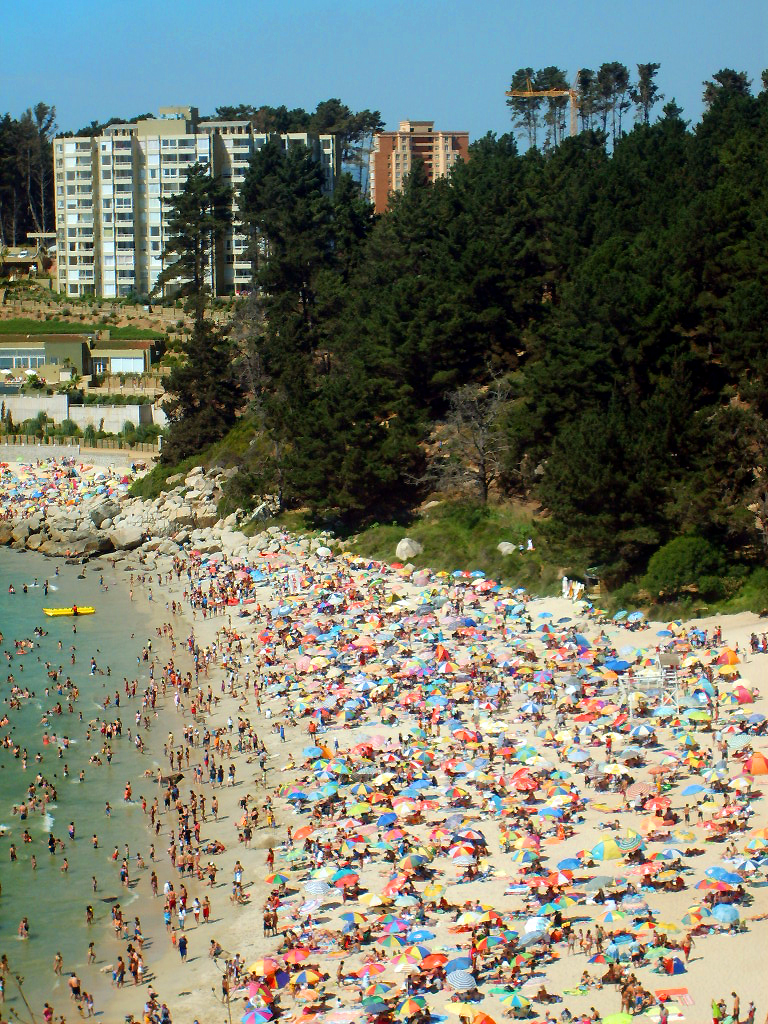 A multitude of sunbathers at the beach