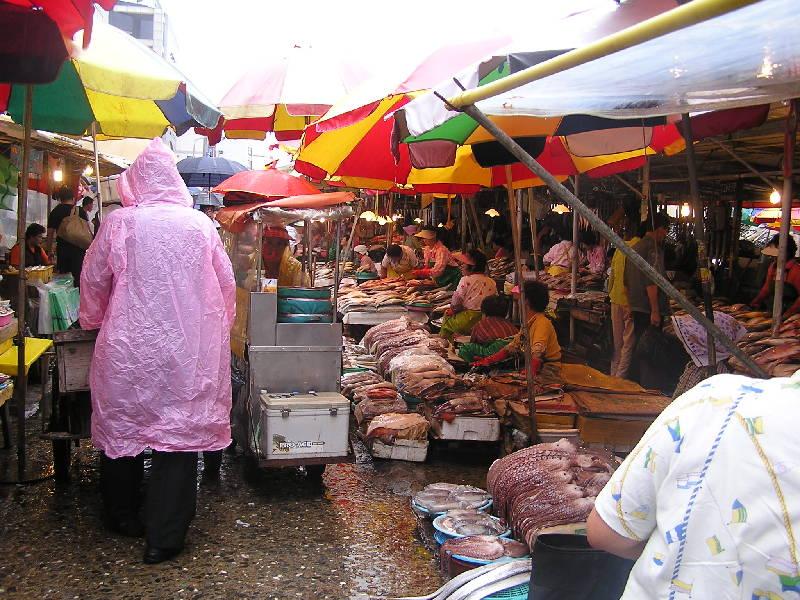 File:Fish market Jagalchi Busan 2.jpg