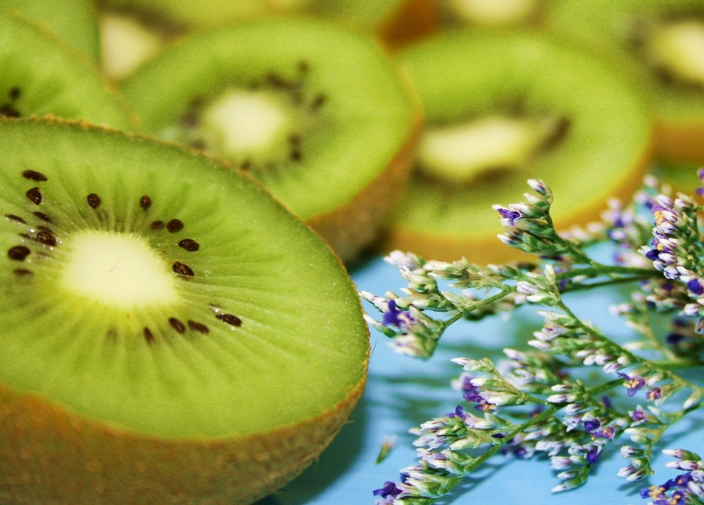 Filefree Pretty Green Kiwi Fruit On Aqua With Little Flowers