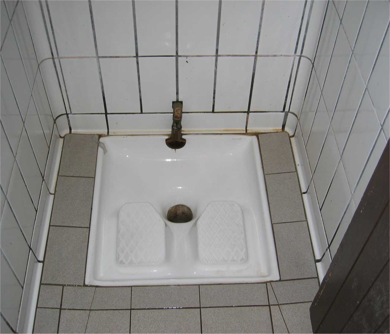 Image of a Turkish Toilet (Wikipedia)