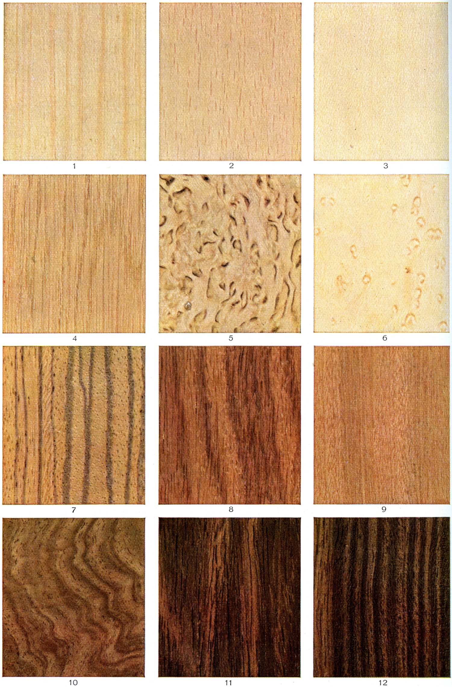 Is it OK to mix-and-match wood species in your home?