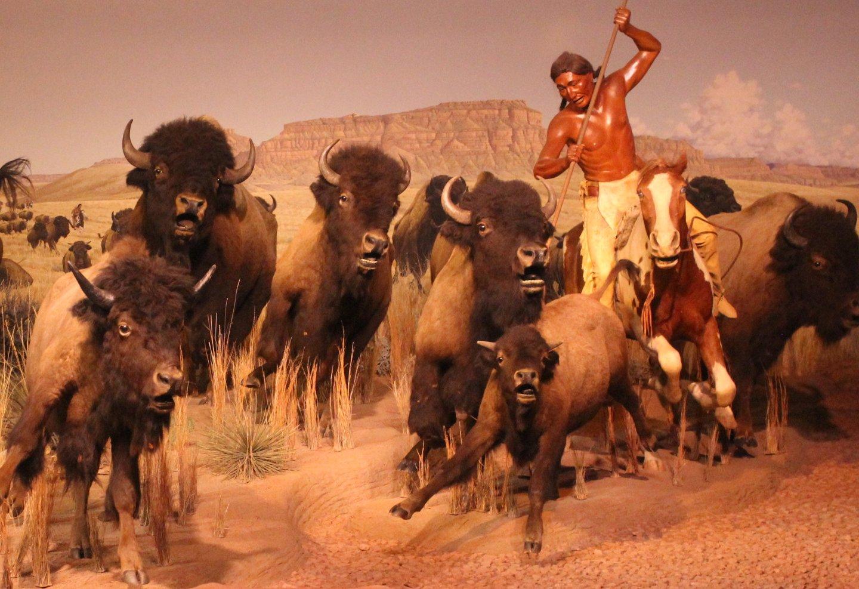 Dating on purpose buffalo