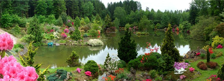 File gondremer jardin botanique wikimedia for Botanique jardin