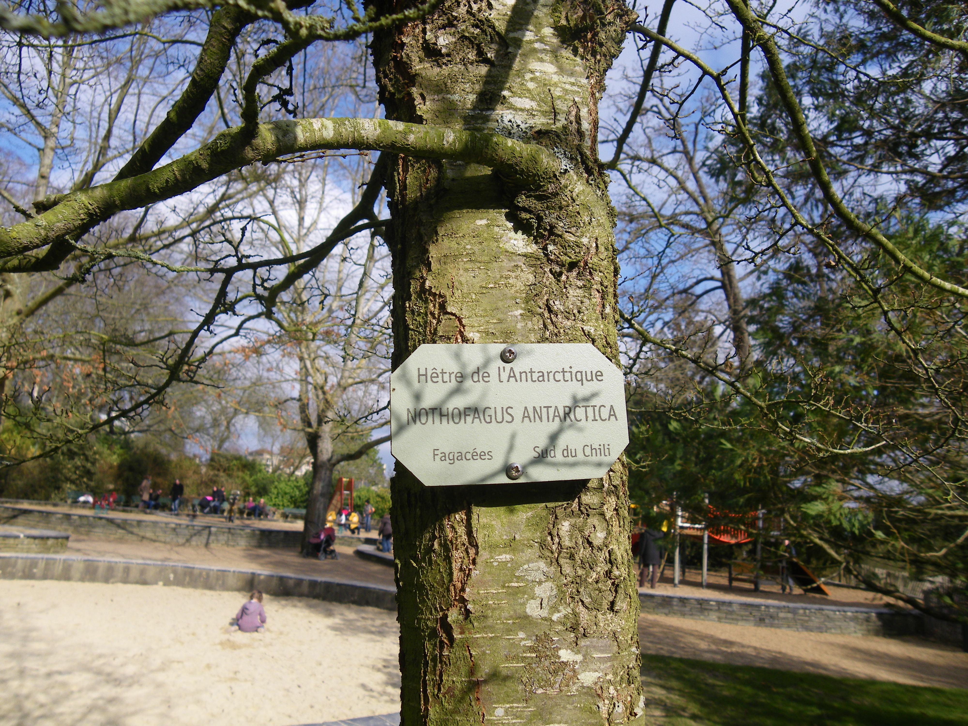 Rencontre Femme Grosse à Lyon. Plan Cul Avec Femmes Rondes Sur Lyon