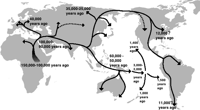 File:Human migration out of Africa.png   Wikimedia Commons