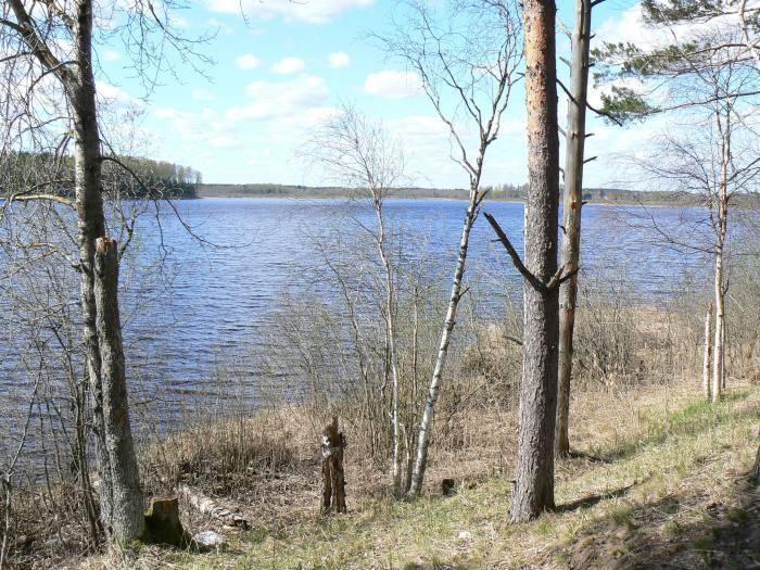 File:Jõemõisa järv 2007.jpg