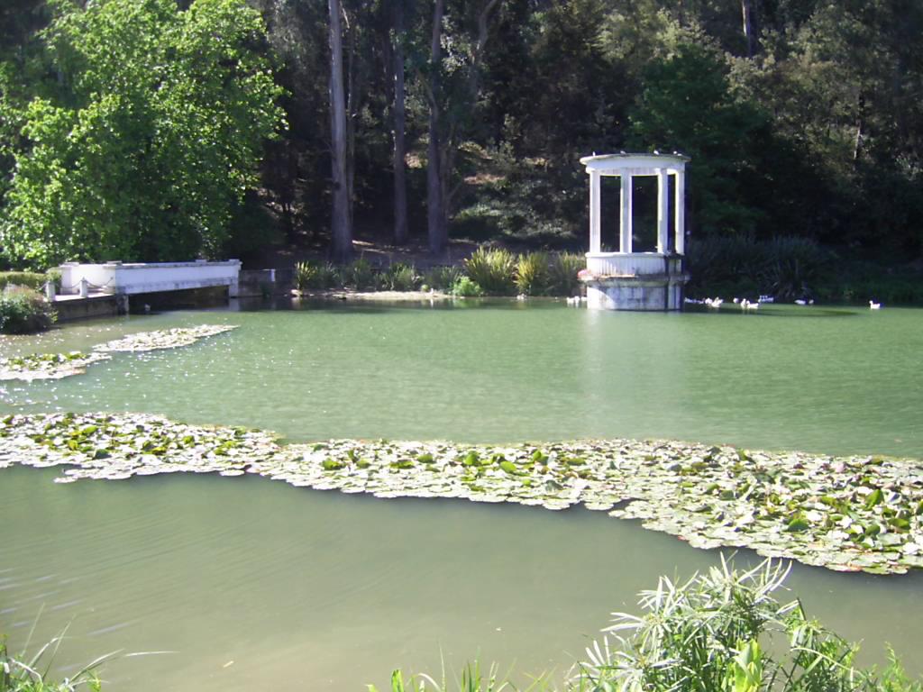 Jard n bot nico nacional de vi a del mar wikipedia la for Jardin botanico vina